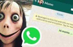 Block Momo WhatsApp number