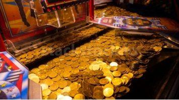 Technical Information Of Coin Dozer