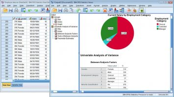 SPSS- What Does It Means