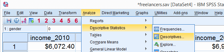 spss-what-is-it-descriptives-Data Analysis