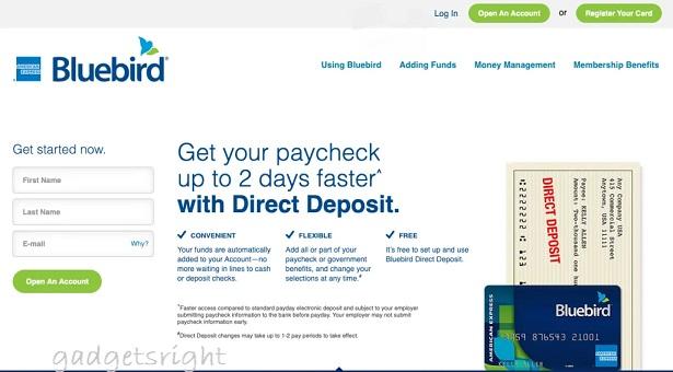 Bluebird CreditCard Review