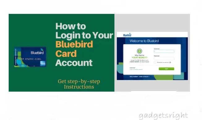 Bluebird Credit Card Review